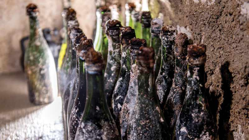 Pol Roger to use robotics to rescue century-old Champagne
