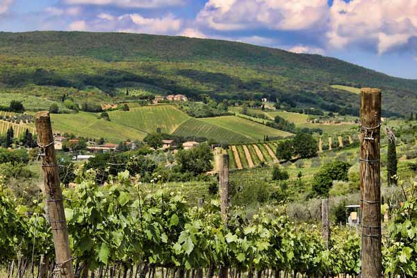 Italian wines to adopt En Primeur model